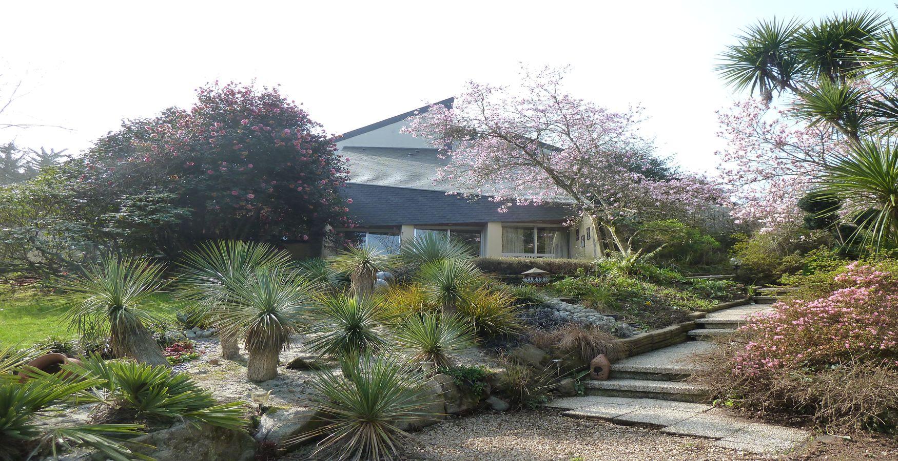 Vente maison contemporaine et son jardin exceptionnel l for Agence jardin immobilier
